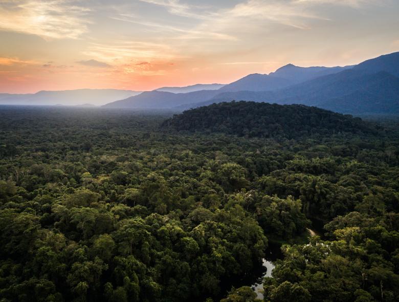 Amazon travels with Thomas saunders